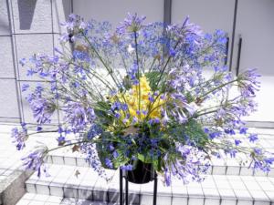 胡蝶蘭のスタンド花を送りたい!胡蝶蘭とお店の選び方のポイント