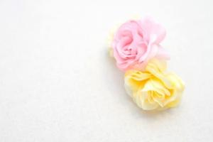 造花の胡蝶蘭の特徴は?人気の理由や価格帯、おすすめシーンをご紹介