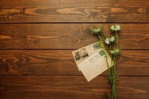 書き方をマスターしよう!胡蝶蘭の立札事例集とマナー