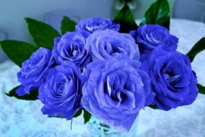 スタンド花で青色をオーダーしよう。珍しさと上品さが注目ギフト