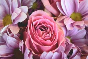 スタンド花で人気のピンク色。印象の違いや色の組み合わせを知ろう