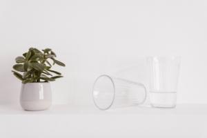 観葉植物の水やり道具にこだわろう。世話が楽しくなるグッズ5選