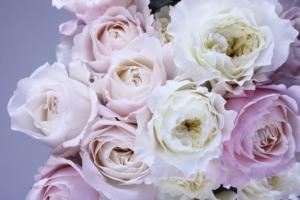 美しい生花を加工するプリザーブドフラワーとは?特徴や作り方を紹介
