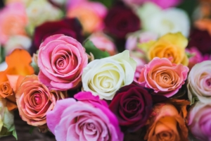 プリザーブドフラワーは優しいピンクが人気。女性への贈り物にも最適