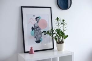 観葉植物で部屋をおしゃれに見せる。飾り方とサイズ別のおすすめ9選
