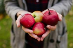 おいしいリンゴの見分け方は?人気の品種や保存のコツも紹介