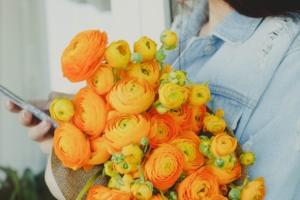 春の花ラナンキュラスの魅力とは?長く楽しむコツも紹介