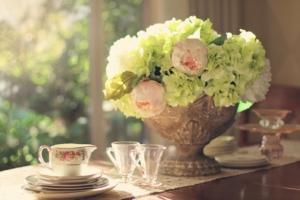 芍薬の特徴と育て方。美人を表す花を自宅できれいに咲かせよう