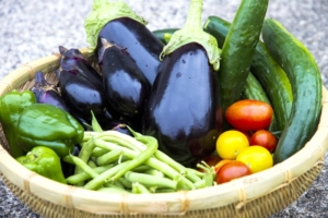 5月に植えられる野菜は?おすすめの野菜と上手に栽培するコツを紹介