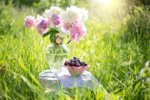 5月19日の誕生花 花言葉の由来、誕生日の有名人、何の日かも解説